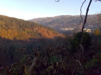 Vila Verde Braga